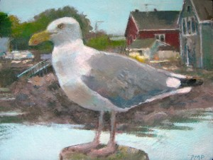 Harbor Gull, Stonington